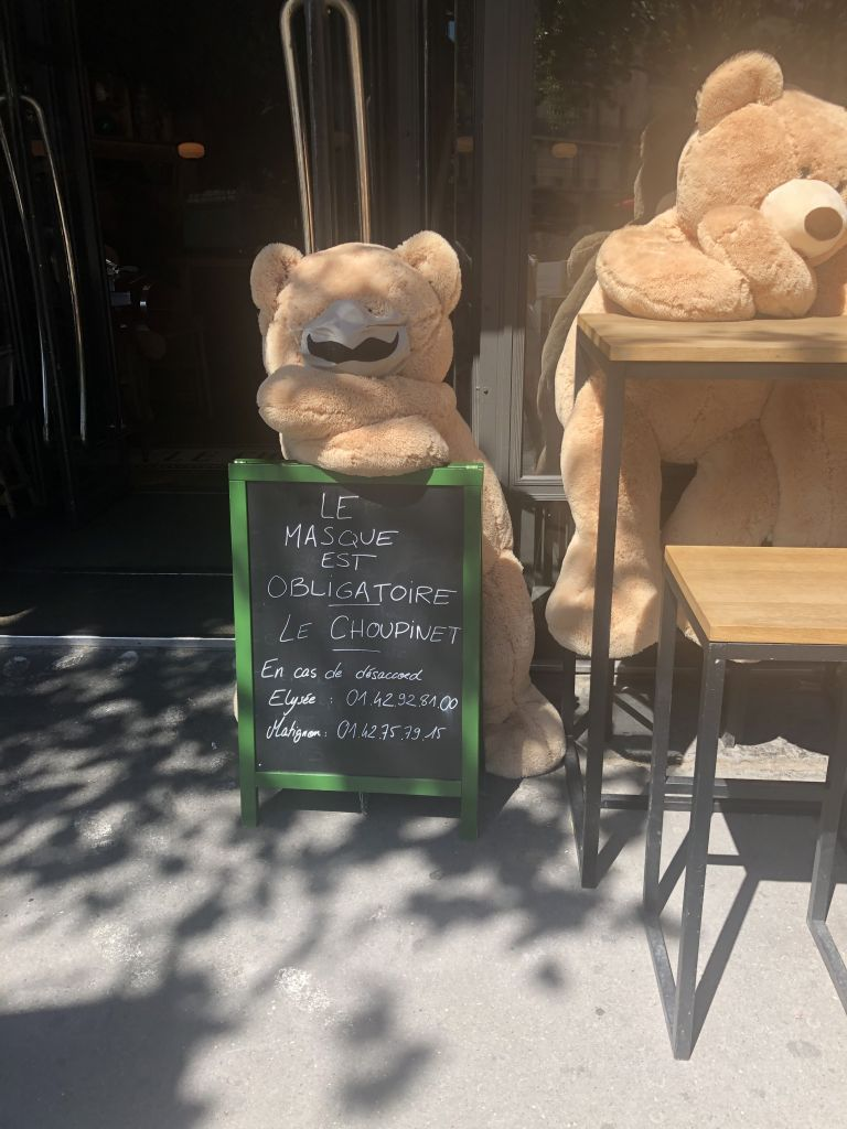 Teddy bear with a mask