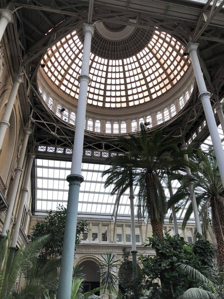Nice roof and palms in museum