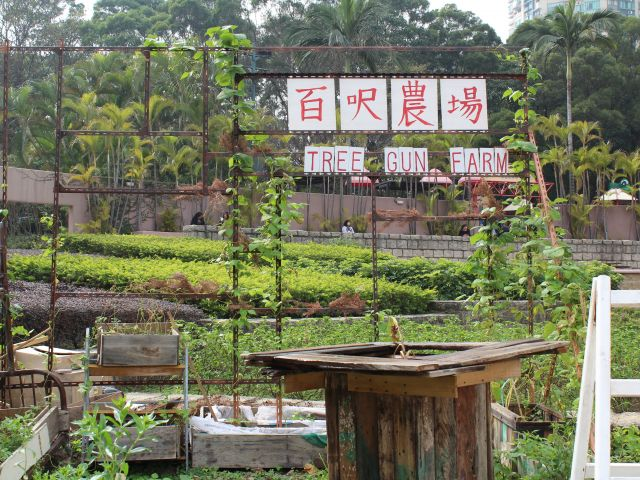 Farm in Hong KOng
