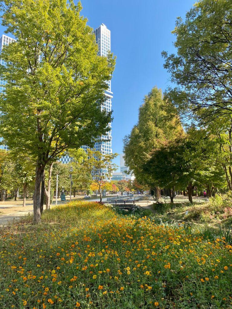 a park in Seoul