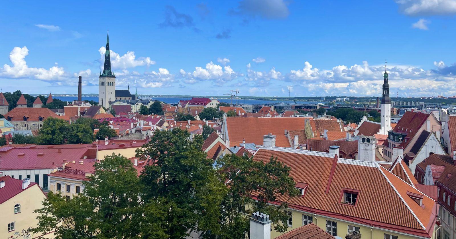 Tallinn's rooftops seen from the Kohtuotsa Viewing Point.